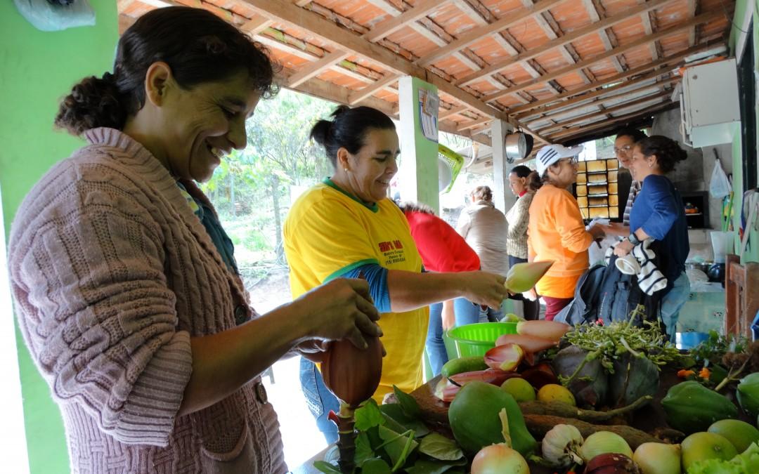 Mulheres agricultoras familiares e sua produção de orgânicos . Crédito: Sofa